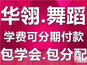 信丰华翎舞蹈国际连锁,专业学习成人零基础舞蹈