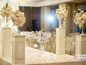 全国知十大星域名品牌,蜜匠婚礼策划公司 彩神川下载体验店
