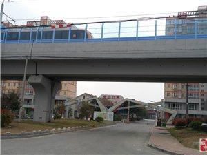 出租南京六合龙池茉莉江苏文化产业博览园画家村商铺