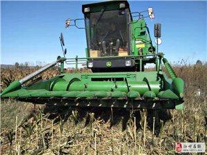 出售W80高粱玉米收割臺