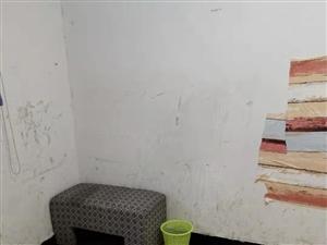 杨芳路5室0厅1卫1233元/月