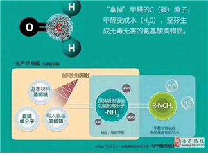 檢測甲醛治理甲醛除甲醛公司除異味新房除甲醛免費預約