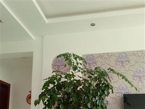 绿景苑3室2厅1卫1500元/月