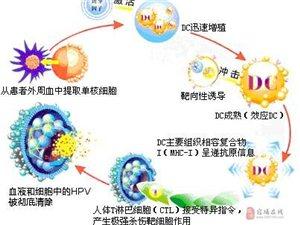 宿州蚌埠生殖器疱疹,首选抗体疫苗疗法