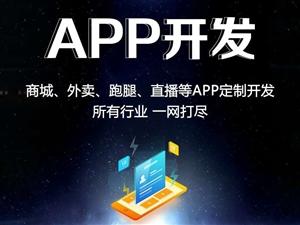 一家專業軟件APP小程序定制開發公司