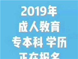 學歷教育——2019年成人高考,火熱招生中