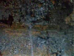晉中市祁縣消防自來水管道漏水檢測探測