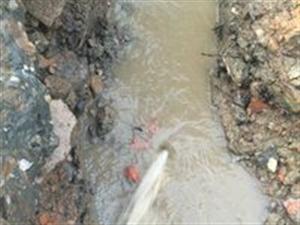 呂梁市柳林縣專業黑蝙蝠自來水管道漏水檢測