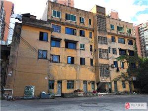 公园道对面单位宿舍3室2厅1卫800元/月