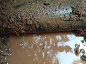 洛陽市汝陽縣專業黑蝙蝠自來水管道漏水檢測