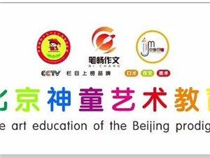 北京神童藝術教育