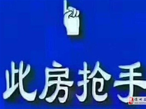 彩神川下载网红小看着区》,赠送40平,南北通大4房,首付15万
