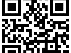 500元建站-专业网站建设-优秀手机界面