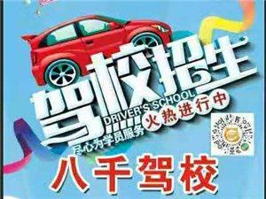郑州港区八千驾校,常年招生,随学随到,开设普通版,VIP班!