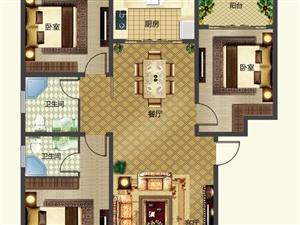 D户型/三室两厅两卫