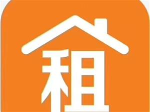 禄禧新城电梯5楼136平1500元/月带车位储藏室