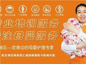 育婴师、产后恢复师、小儿推拿师等培训 专业技能培训