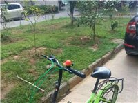 旺尔玛20寸炫彩单速折叠自行车可放后备箱学骑标配