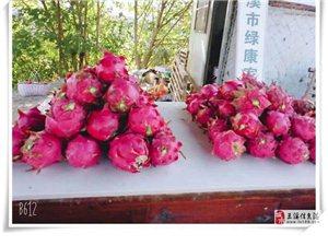 蓝宝石20一斤,红水晶火龙果大果15一斤