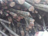 杭州灣新區專業回收廢電纜,各種電線,網線回收