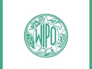 國家一級知識產權代理機構,承接全國商標專利注冊業務
