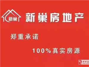 天元上东城2室1厅1卫900元/月