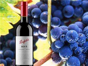 奔富BIN8赤霞珠設拉子紅葡萄酒 澳大利亞原裝進口