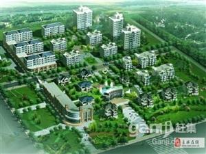 北京路市府东商住独栋别墅789万双气租约20万多停车位