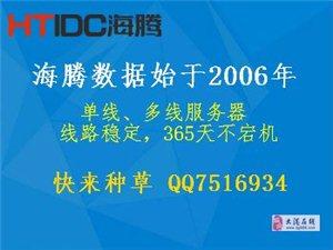 一年仅七千的多线100M服务器,沉迷于它便宜独享无