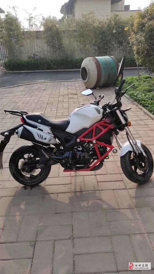 出售95成新银钢小怪兽125迷你小跑摩托车
