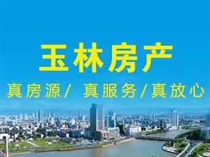 (4919)麒龙新城