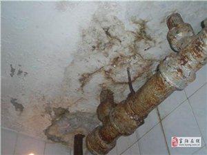 富陽衛生間防水-富陽外墻防水-(電話+免費保修)