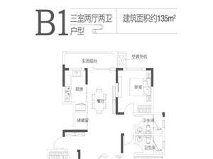 B1�粜�