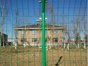 綠色圈地方格網A泰展綠色圈地方格網生產廠家