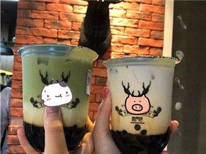 鹿角巷奶茶技術轉讓 奶茶水果茶做法培訓學習鹿角巷