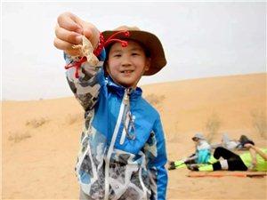 十一 沙漠远征军之旅