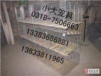 售兔子笼鸽子笼鹧鸪笼鹌鹑笼小鸡笼宠物笼