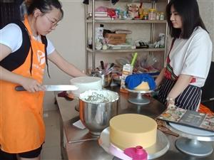 菏泽烘焙师 西点师专业培训,菏泽蛋糕裱花技术培训
