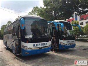 孝感應城武漢旅游大巴中巴17到55座旅游包車
