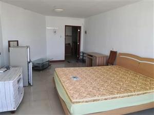富都国际一期1室1厅1卫800元/月