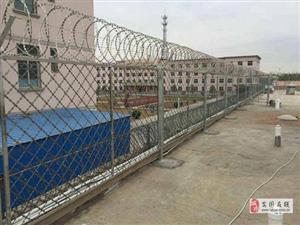 監獄隔離防護網A羅定監獄隔離防護網廠家
