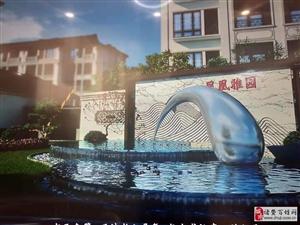 海宁凤凰雅园开发商是谁以及实力如何,开发过那些楼