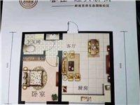 城南新区春佳经典新城1室1厅1卫29万元