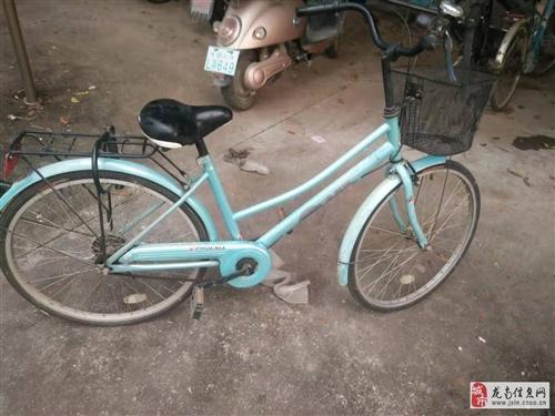正品鳳凰自行車,95成新,出售200元