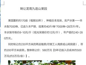 個人:170畝日本豐水梨果園轉讓