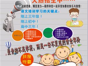 專業作文班常年招生,助您的孩子提升語文水平