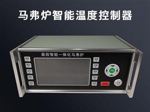 河南智能電子產品研發公司_馬弗爐智能溫度控制器