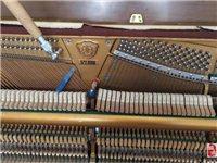 石家庄钢琴调律师上门服务,钢琴调律,钢琴维修