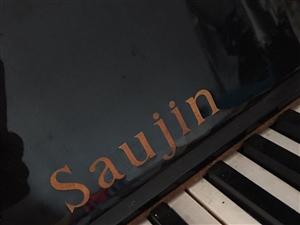 Saujin�琴出售