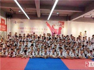 精博跆拳道體驗課程招生,南昌各區域均有場館